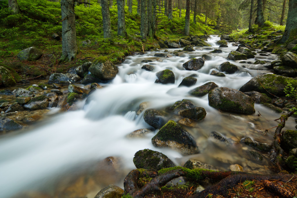 fast flowing stream in Low Tatras, Slovakia